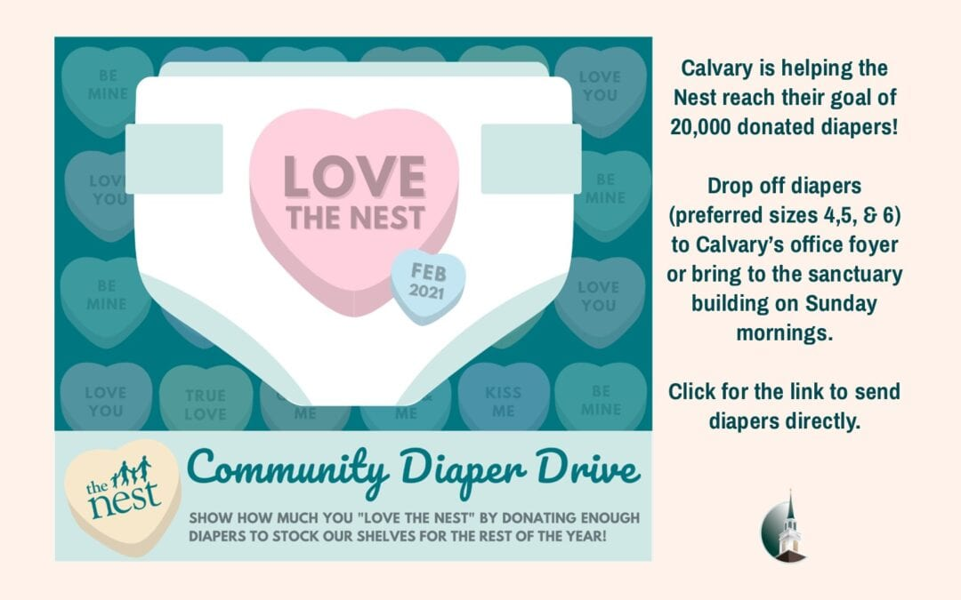 Diaper Drive for The Nest February 2021